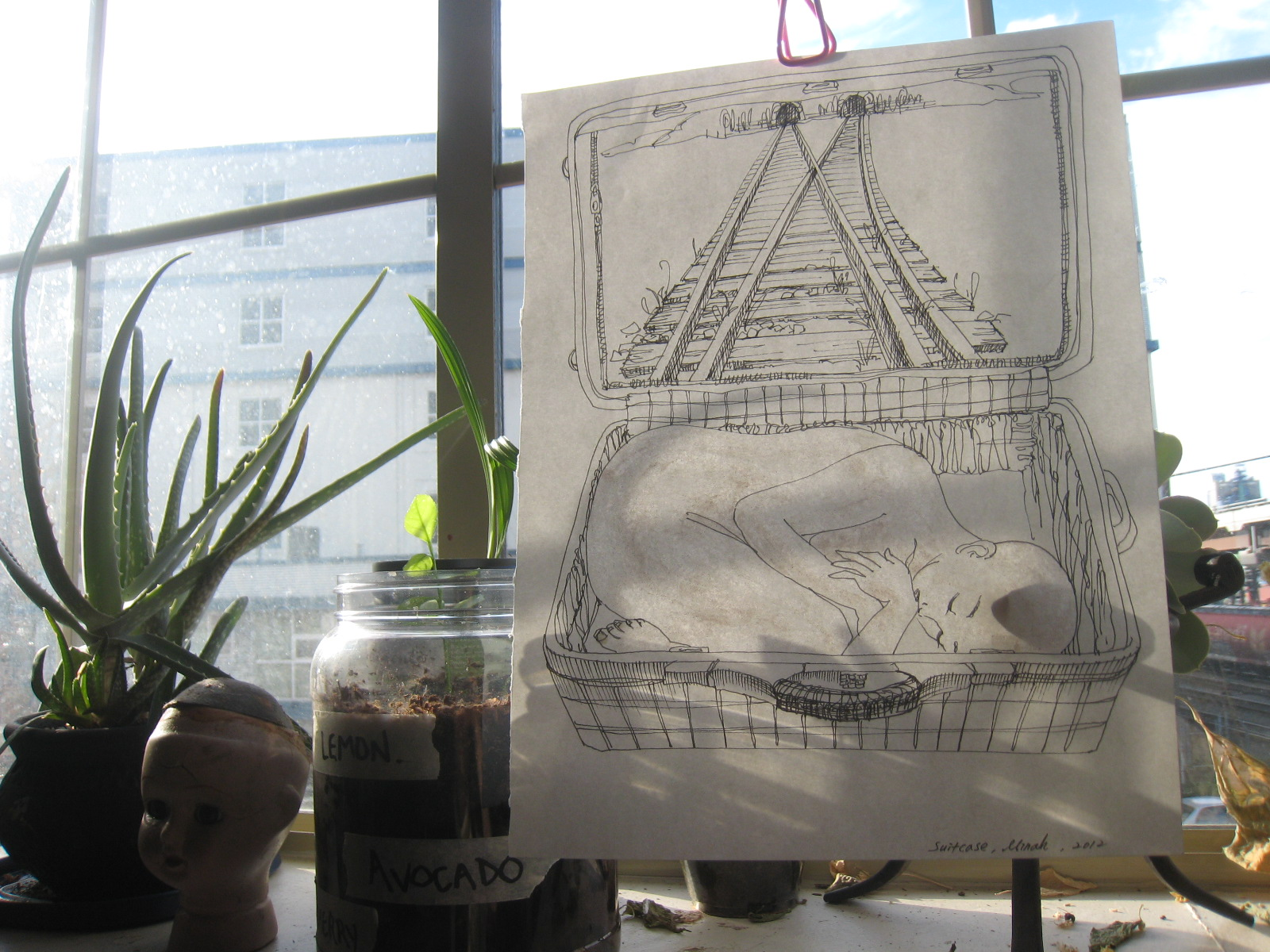 Minah Lee's drawing 'suitcase' hanging by the window with plants_portal to art action earwig website